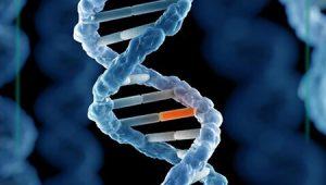جهش های ژنتیکی